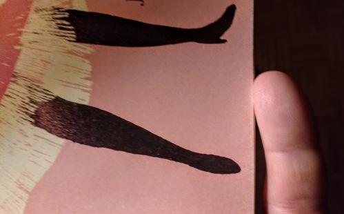 doris legs