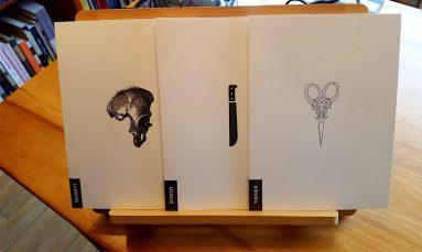 cropped-these-three1.jpg
